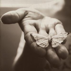 Darla.Butterfly2
